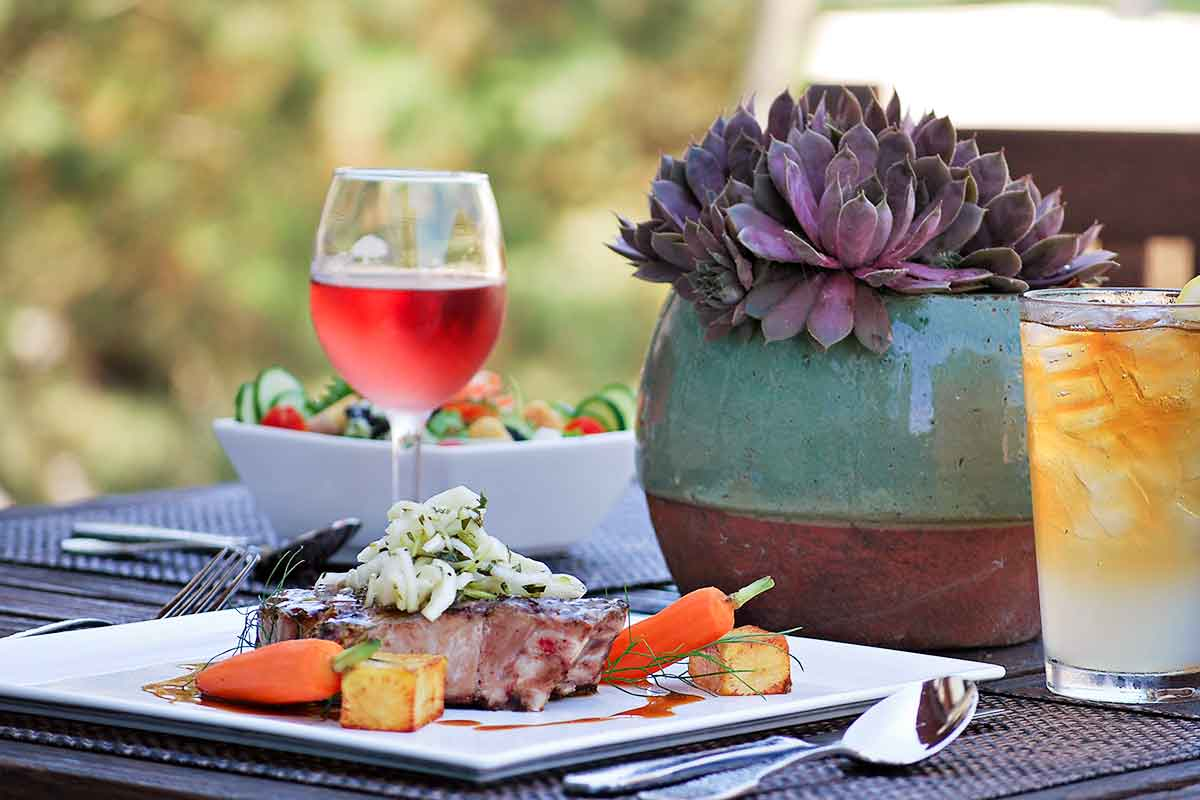 A piece of filet mignon with carrots, a plant nearby, a glass of wine with a cucumber salad