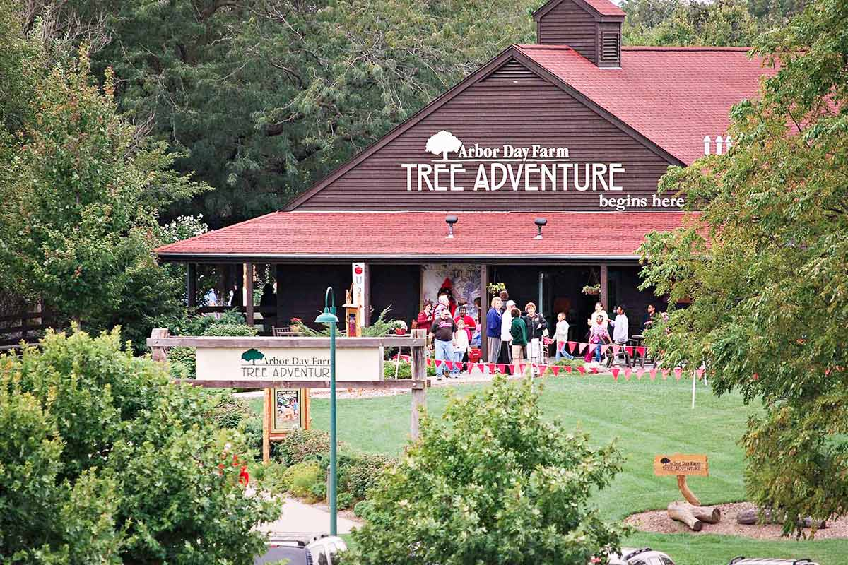 Arbor day tree adventure lodge with people and trees surrounding the area