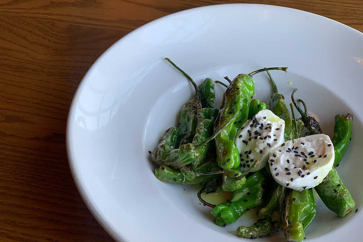 Blistered Shishido Peppers served at Timbers at Lied Lodge. Burrata cheese, sesame honey vinaigrette, black sea salt