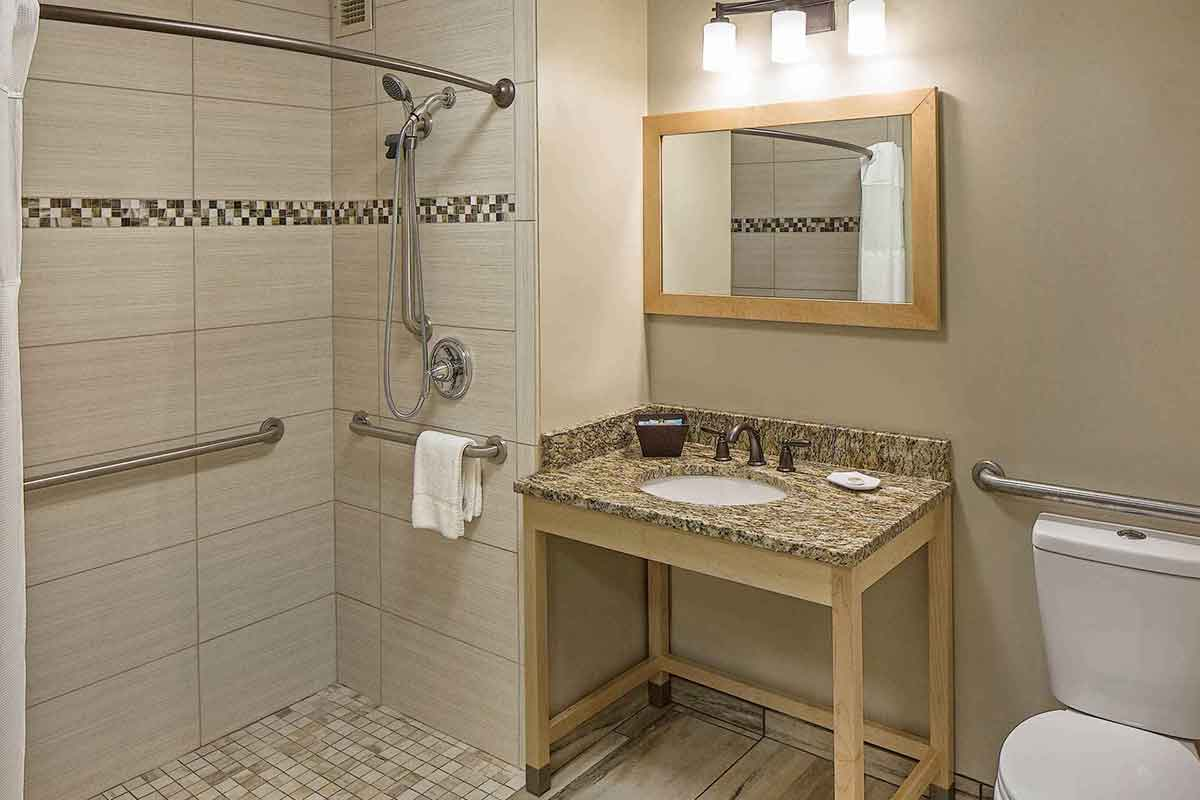 an accessible guest bathroom with a shower and rails, toilet, sink and a vanity with bright lighting